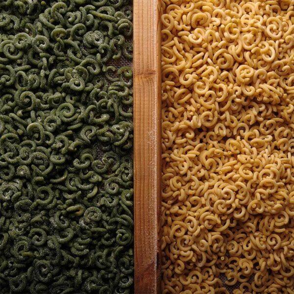 gramigna bicolorepanna e salsiccia mamma lia