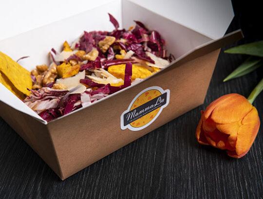 pranzo in ufficio cucina da asporto mamma lia sassuolo tradizioni gastronomiche box insalatone